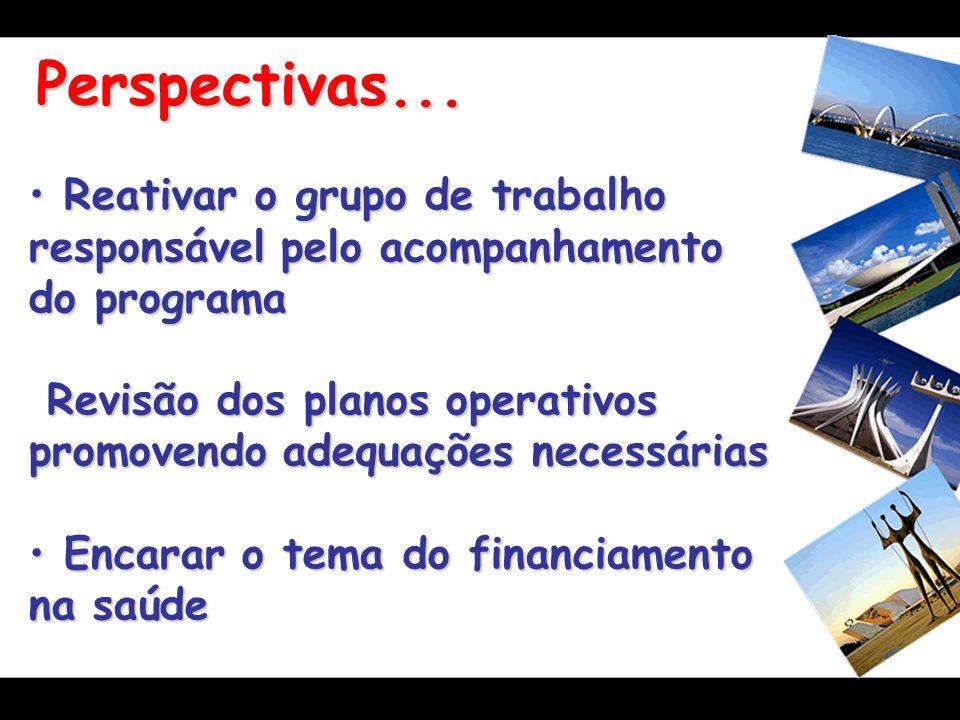 Perspectivas... Reativar o grupo de trabalho responsável pelo acompanhamento do programa Reativar o grupo de trabalho responsável pelo acompanhamento