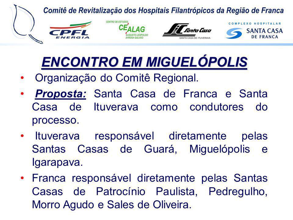 ENCONTRO EM MIGUELÓPOLIS Organização do Comitê Regional. Proposta: Santa Casa de Franca e Santa Casa de Ituverava como condutores do processo. Ituvera