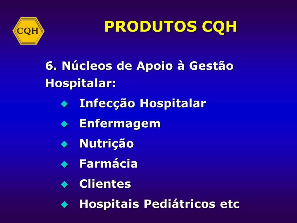 PRODUTOS CQH 1. Avaliação da Qualidade 2. Banco de dados 3. Cursos 4. Modelo de Gestão 5. Prêmio Nacional da Gestão em Saúde - PNGS