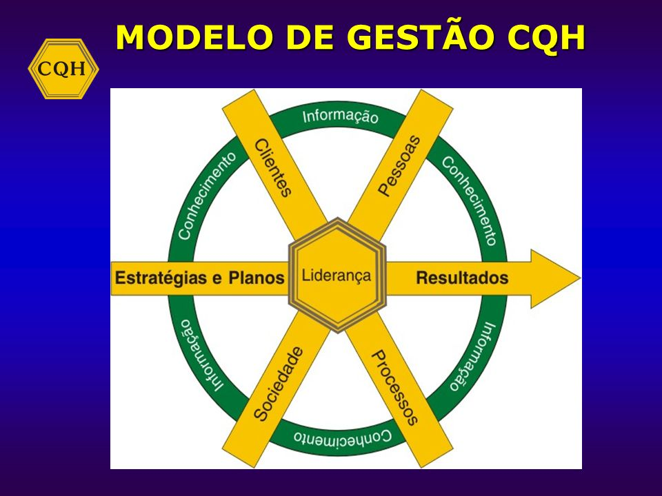 Liderança e constância de propósitos; Liderança e constância de propósitos; Visão de futuro; Visão de futuro; Foco no cliente e no mercado; Foco no cl