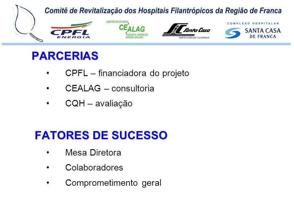CPFL / CEALAG / CQH – Sistema de lideranças, – Elaboração e acompanhamento de estratégias e planos, – Estruturação de processos, – Responsabilidade sócio-ambiental, – Desenvolvimento de pessoas e – Foco em clientes e resultados.