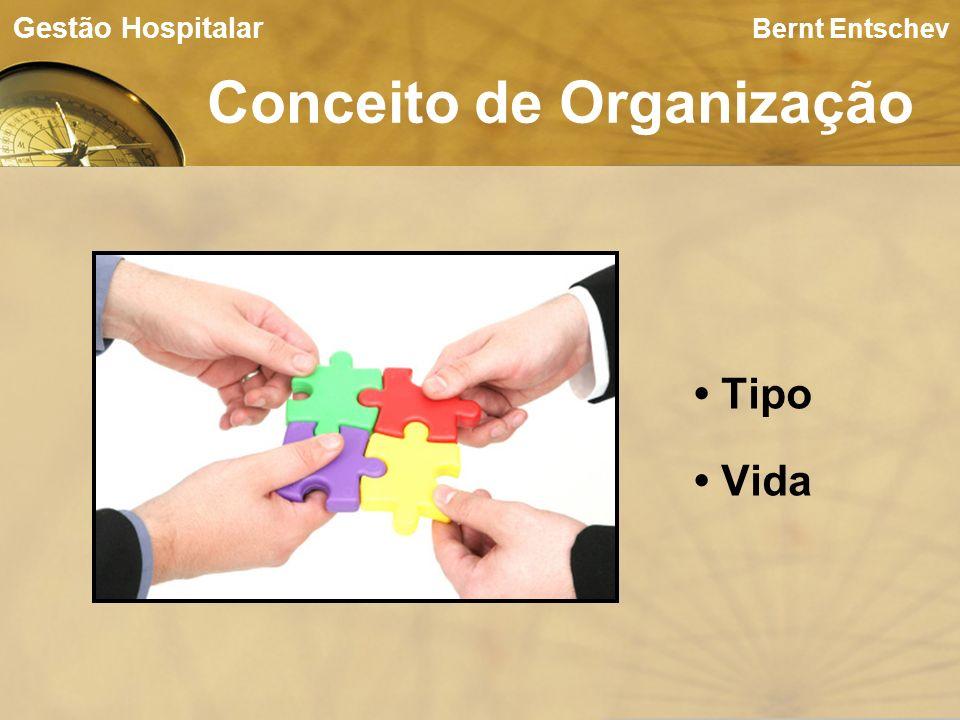 Conceito de Organização Bernt Entschev Tipo Vida Gestão Hospitalar