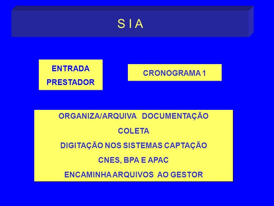 ORGANIZA/ARQUIVA DOCUMENTAÇÃO COLETA DIGITAÇÃO NOS SISTEMAS CAPTAÇÃO CNES, BPA E APAC ENCAMINHA ARQUIVOS AO GESTOR ORGANIZA/ARQUIVA DOCUMENTAÇÃO COLET