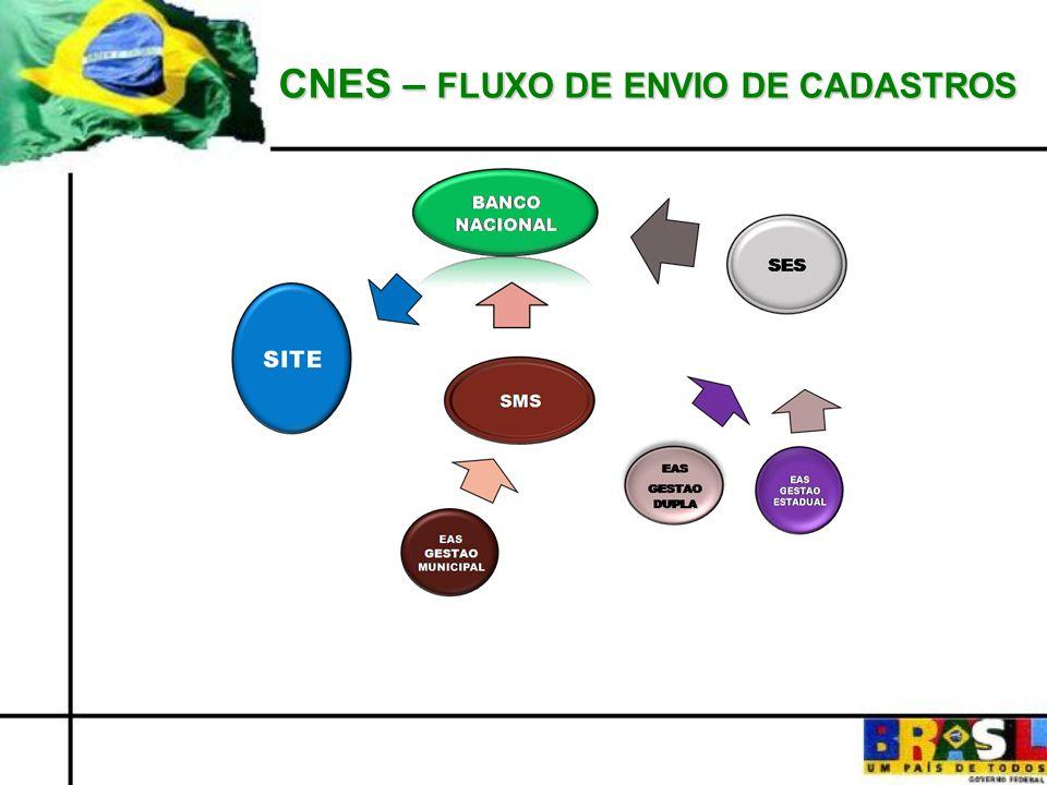 CNES – FLUXO DE ENVIO DE CADASTROS