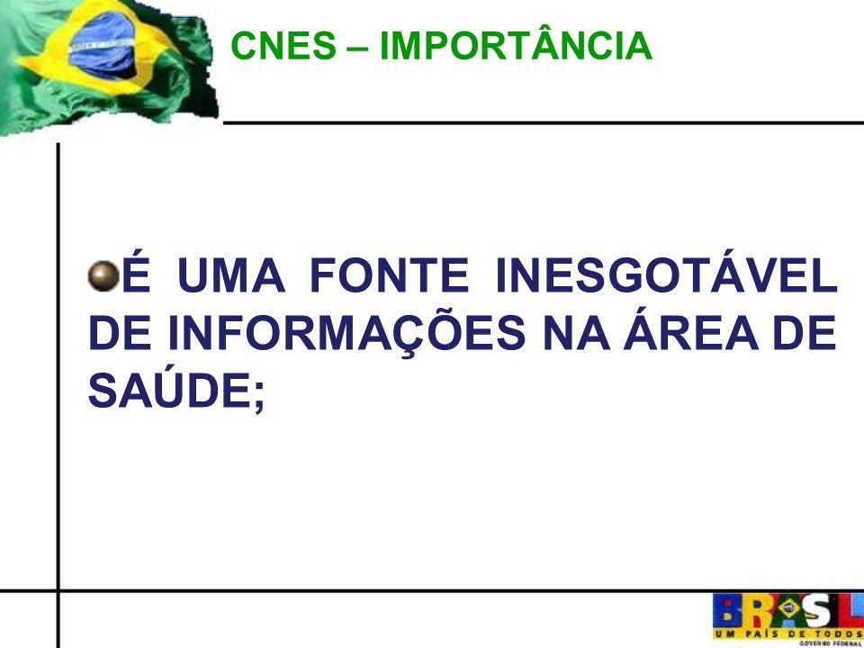 CNES – IMPORTÂNCIA É UMA FONTE INESGOTÁVEL DE INFORMAÇÕES NA ÁREA DE SAÚDE;