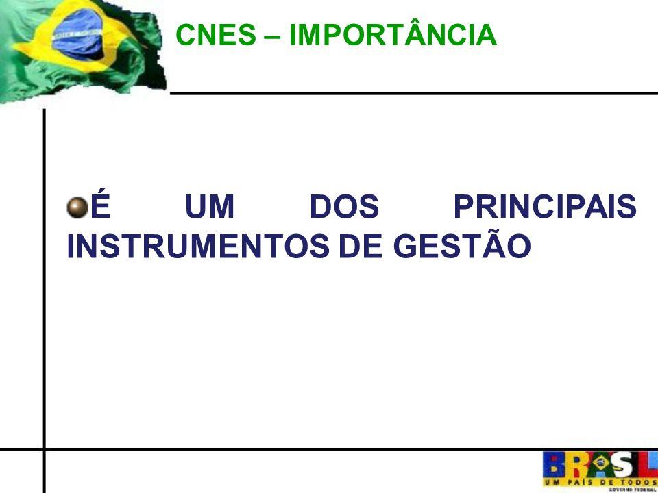 CNES – IMPORTÂNCIA É UM DOS PRINCIPAIS INSTRUMENTOS DE GESTÃO