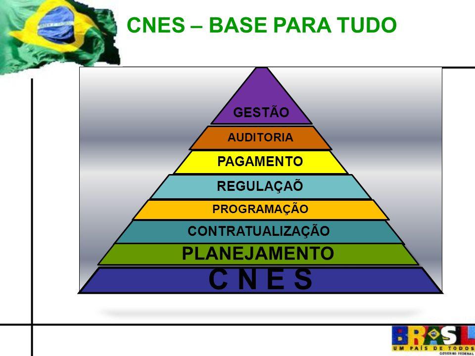 CNES – BASE PARA TUDO GESTÃO AUDITORIA PAGAMENTO REGULAÇAÕ PROGRAMAÇÃO CONTRATUALIZAÇÃO PLANEJAMENTO C N E S