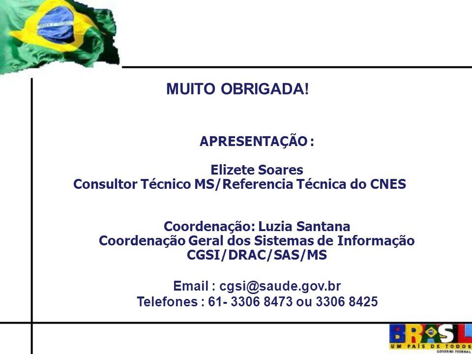 MUITO OBRIGADA! APRESENTAÇÃO : Elizete Soares Consultor Técnico MS/Referencia Técnica do CNES Coordenação: Luzia Santana Coordenação Geral dos Sistema