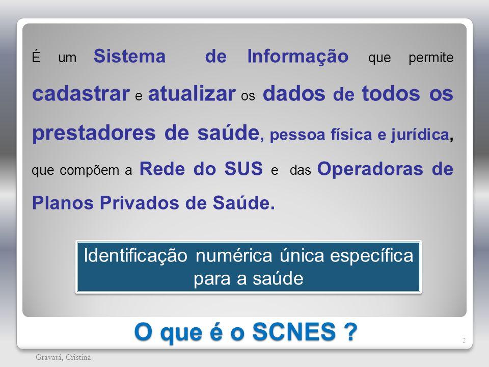 O que é o SCNES ? 2 Gravatá, Cristina É um Sistema de Informação que permite cadastrar e atualizar os dados de todos os prestadores de saúde, pessoa f