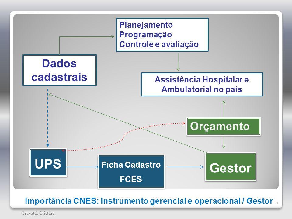 Importância CNES: Instrumento gerencial e operacional / Gestor 3 Gravatá, Cristina Dados cadastrais Planejamento Programação Controle e avaliação Assi