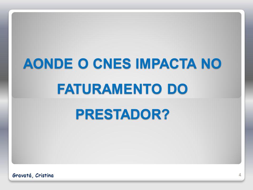 AONDE O CNES IMPACTA NO FATURAMENTO DO PRESTADOR? 4 Gravatá, Cristina