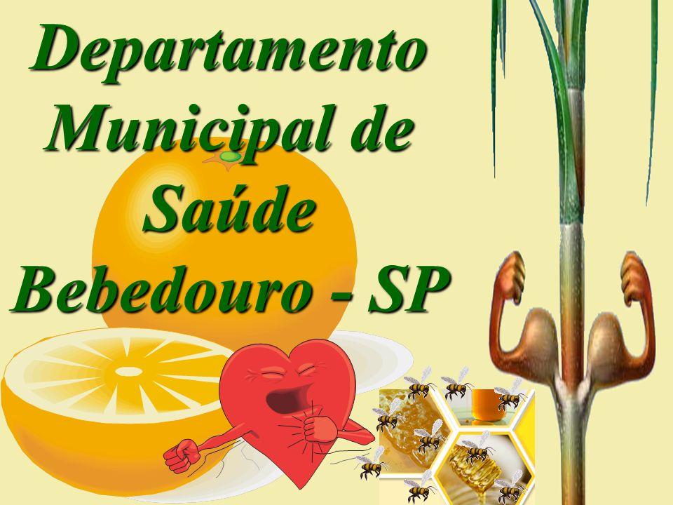 Departamento Municipal de Saúde Bebedouro - SP