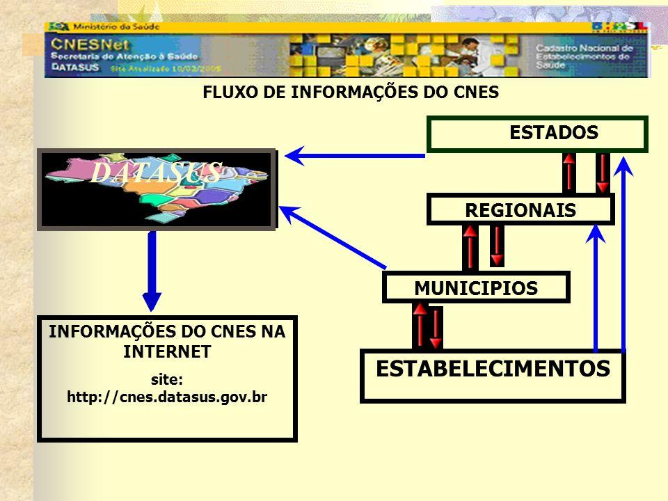 DATASUS ESTADOS REGIONAIS MUNICIPIOS ESTABELECIMENTOS FLUXO DE INFORMAÇÕES DO CNES INFORMAÇÕES DO CNES NA INTERNET site: http://cnes.datasus.gov.br