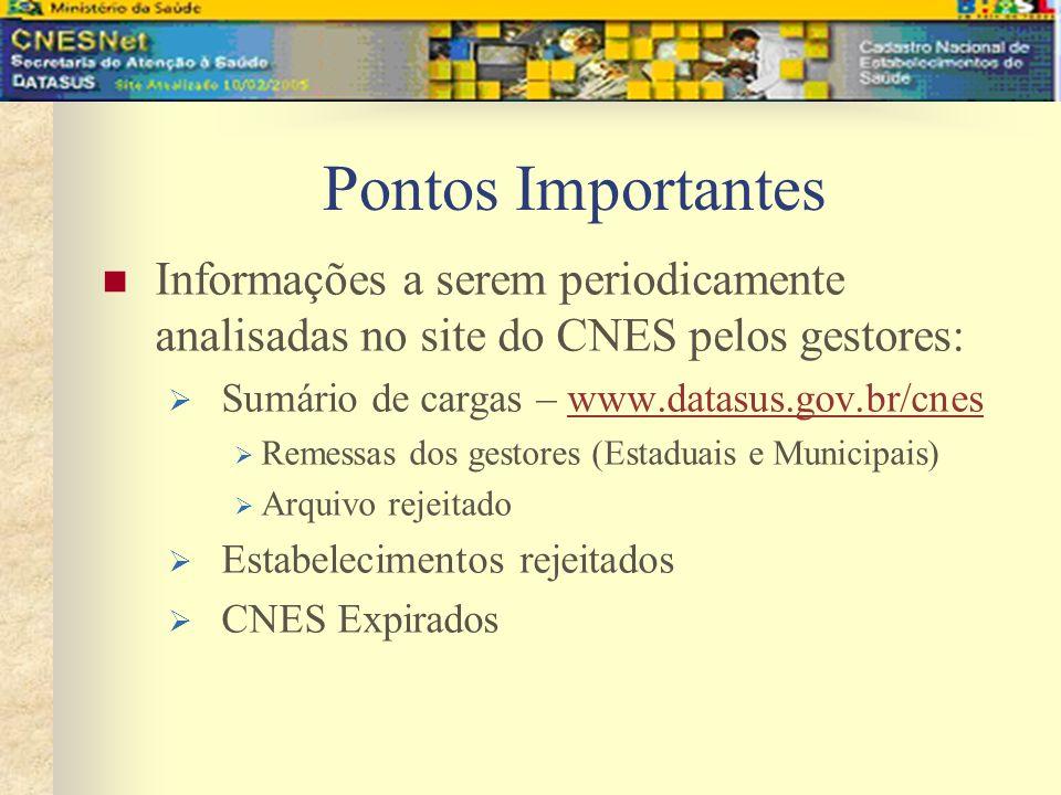 Pontos Importantes Informações a serem periodicamente analisadas no site do CNES pelos gestores: Sumário de cargas – www.datasus.gov.br/cneswww.datasu