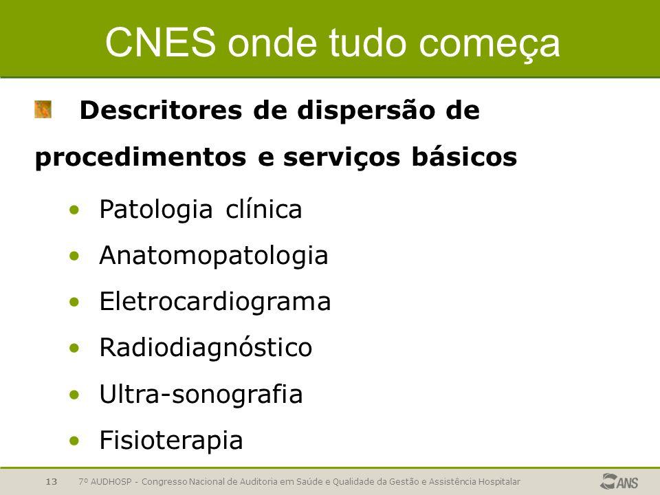 7º AUDHOSP - Congresso Nacional de Auditoria em Saúde e Qualidade da Gestão e Assistência Hospitalar13 CNES onde tudo começa Descritores de dispersão