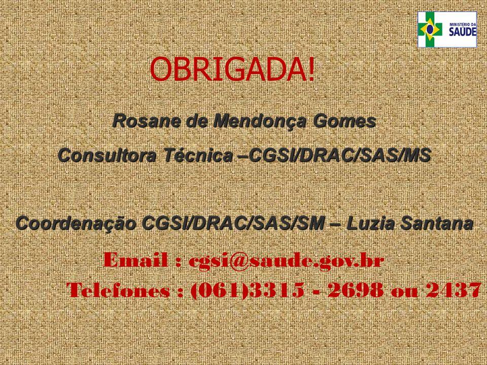 Rosane de Mendonça Gomes Consultora Técnica –CGSI/DRAC/SAS/MS Coordenação CGSI/DRAC/SAS/SM – Luzia Santana Coordenação CGSI/DRAC/SAS/SM – Luzia Santan