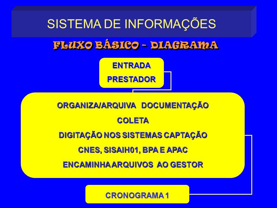 ORGANIZA/ARQUIVA DOCUMENTAÇÃO COLETA DIGITAÇÃO NOS SISTEMAS CAPTAÇÃO CNES, SISAIH01, BPA E APAC ENCAMINHA ARQUIVOS AO GESTOR ORGANIZA/ARQUIVA DOCUMENT