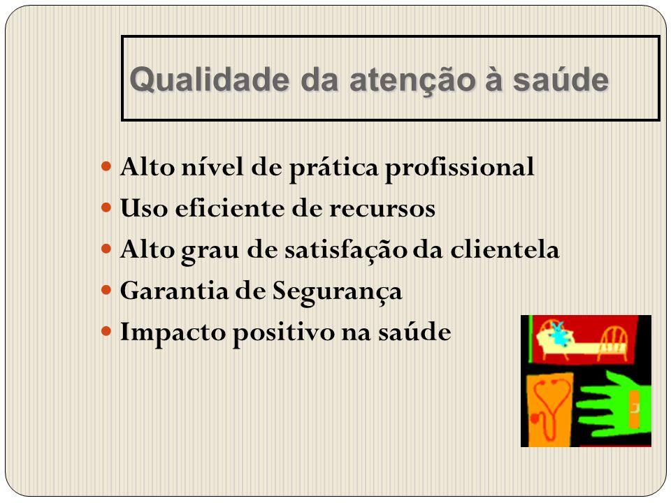 Alto nível de prática profissional Uso eficiente de recursos Alto grau de satisfação da clientela Garantia de Segurança Impacto positivo na saúde Qual