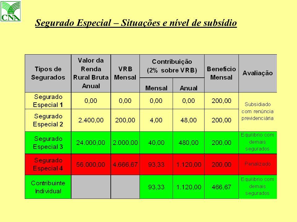 Segurado Especial – Situações e nível de subsídio