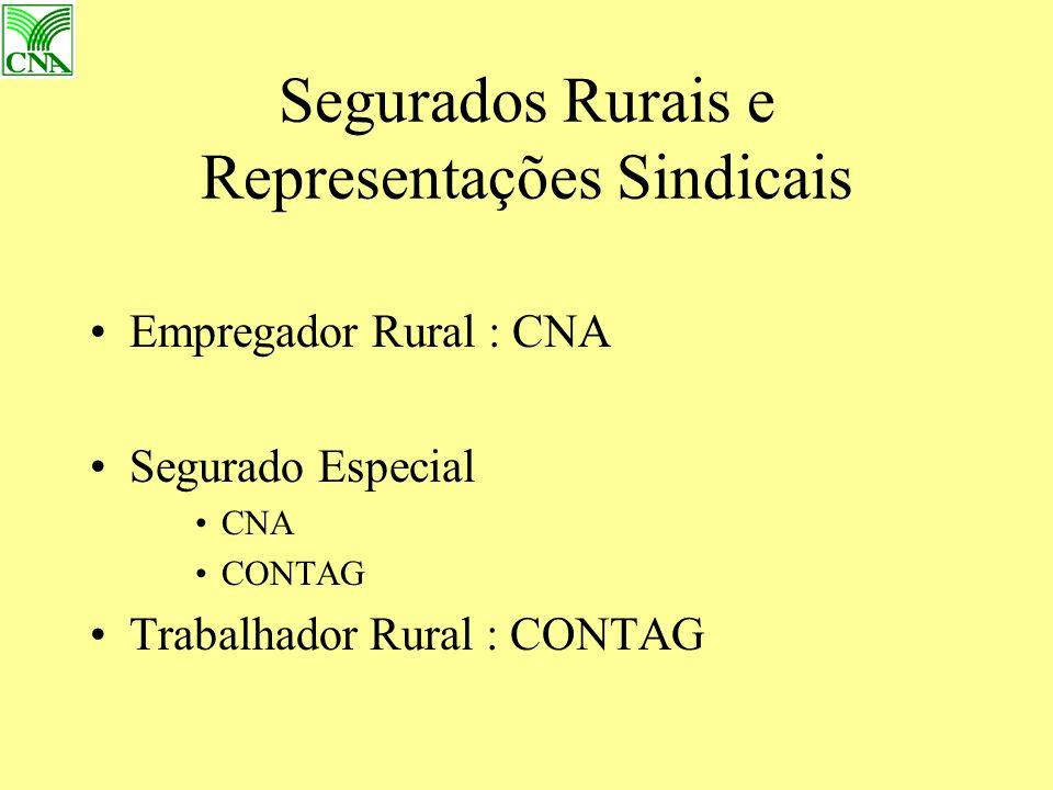 Segurados Rurais e Representações Sindicais Empregador Rural : CNA Segurado Especial CNA CONTAG Trabalhador Rural : CONTAG