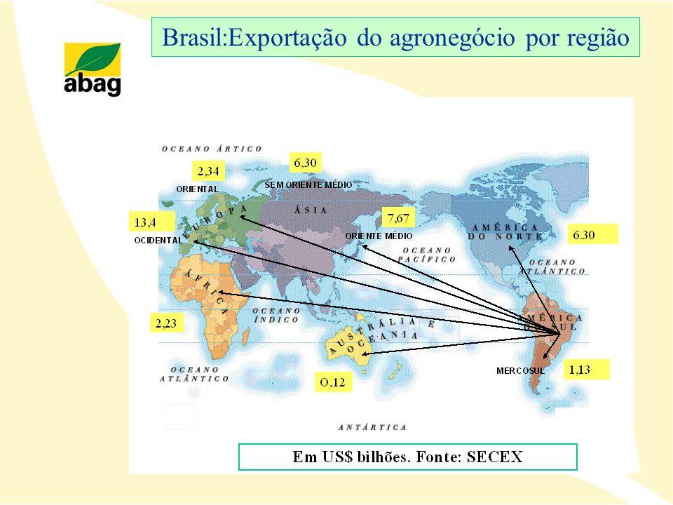Balanço do Transporte Ferroviário no Complexo Soja ** Definidas com base nas metas de crescimento da produtividade (TKU-tonelada útil x quilômetro) acordadas com as concessionárias e definidas pela ANTT para o período 2004/2007 62% 48% Gap logístico Oferta de transporte ferroviário Exportação no complexo soja