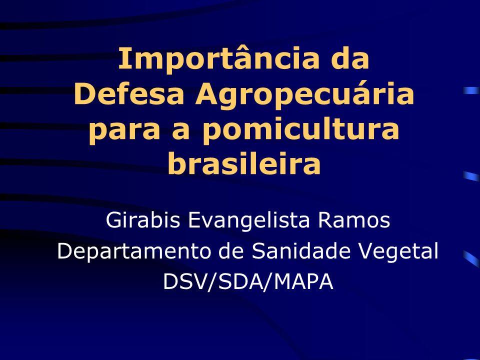 Importância da Defesa Agropecuária para a pomicultura brasileira Girabis Evangelista Ramos Departamento de Sanidade Vegetal DSV/SDA/MAPA