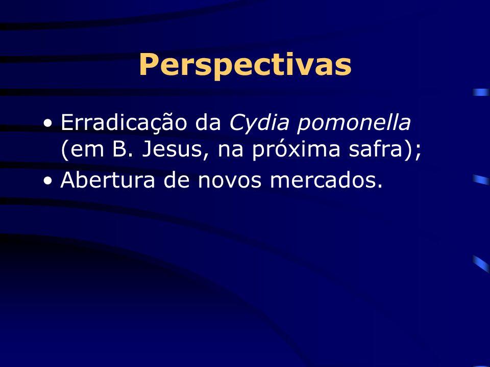 Perspectivas Erradicação da Cydia pomonella (em B. Jesus, na próxima safra); Abertura de novos mercados.