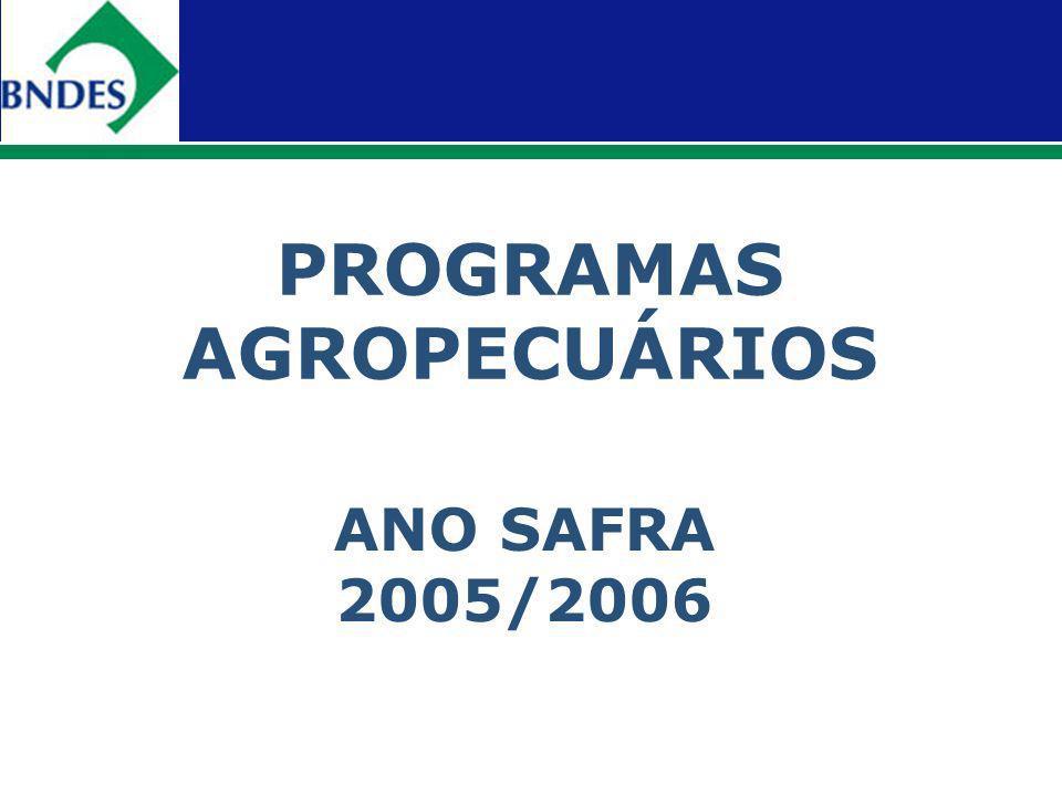 PROGRAMAS AGROPECUÁRIOS ANO SAFRA 2005/2006