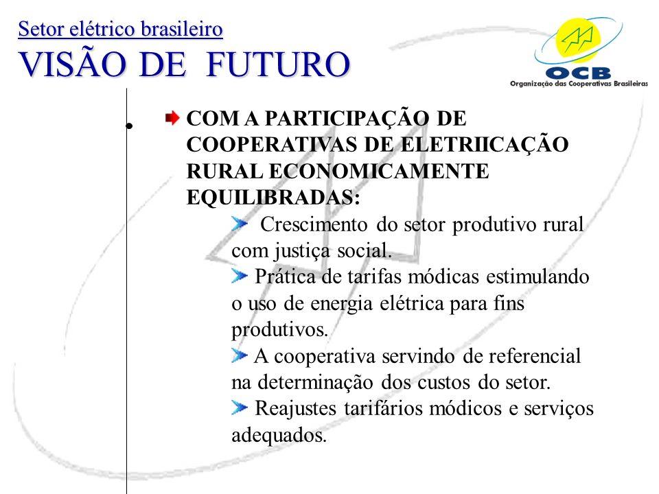 COM A PARTICIPAÇÃO DE COOPERATIVAS DE ELETRIICAÇÃO RURAL ECONOMICAMENTE EQUILIBRADAS: Crescimento do setor produtivo rural com justiça social. Prática