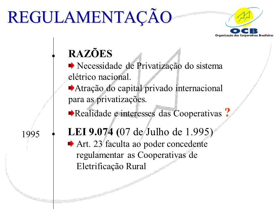 REGULAMENTAÇÃO RAZÕES Necessidade de Privatização do sistema elétrico nacional. Atração do capital privado internacional para as privatizações. Realid