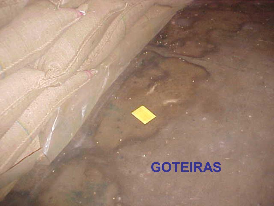 GOTEIRAS