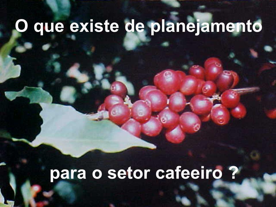 O que existe de planejamento para o setor cafeeiro ?