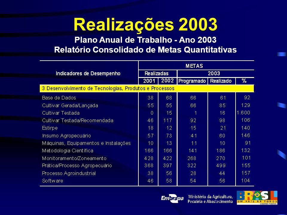 Realizações 2003 Plano Anual de Trabalho - Ano 2003 Relatório Consolidado de Metas Quantitativas