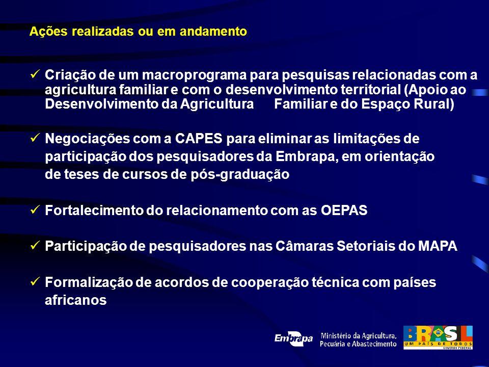 Criação de um macroprograma para pesquisas relacionadas com a agricultura familiar e com o desenvolvimento territorial (Apoio ao Desenvolvimento da Ag