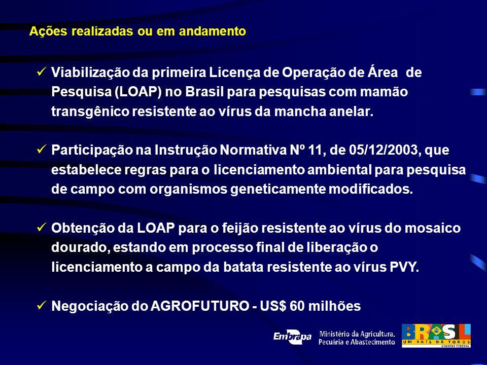 Viabilização da primeira Licença de Operação de Área de Pesquisa (LOAP) no Brasil para pesquisas com mamão transgênico resistente ao vírus da mancha a