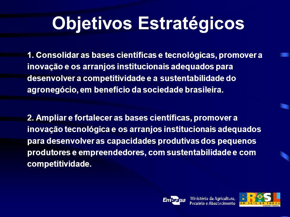Objetivos Estratégicos 1. Consolidar as bases científicas e tecnológicas, promover a inovação e os arranjos institucionais adequados para desenvolver