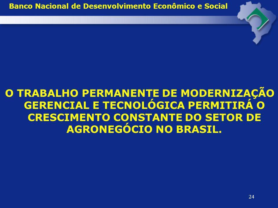 24 Banco Nacional de Desenvolvimento Econômico e Social O TRABALHO PERMANENTE DE MODERNIZAÇÃO GERENCIAL E TECNOLÓGICA PERMITIRÁ O CRESCIMENTO CONSTANT