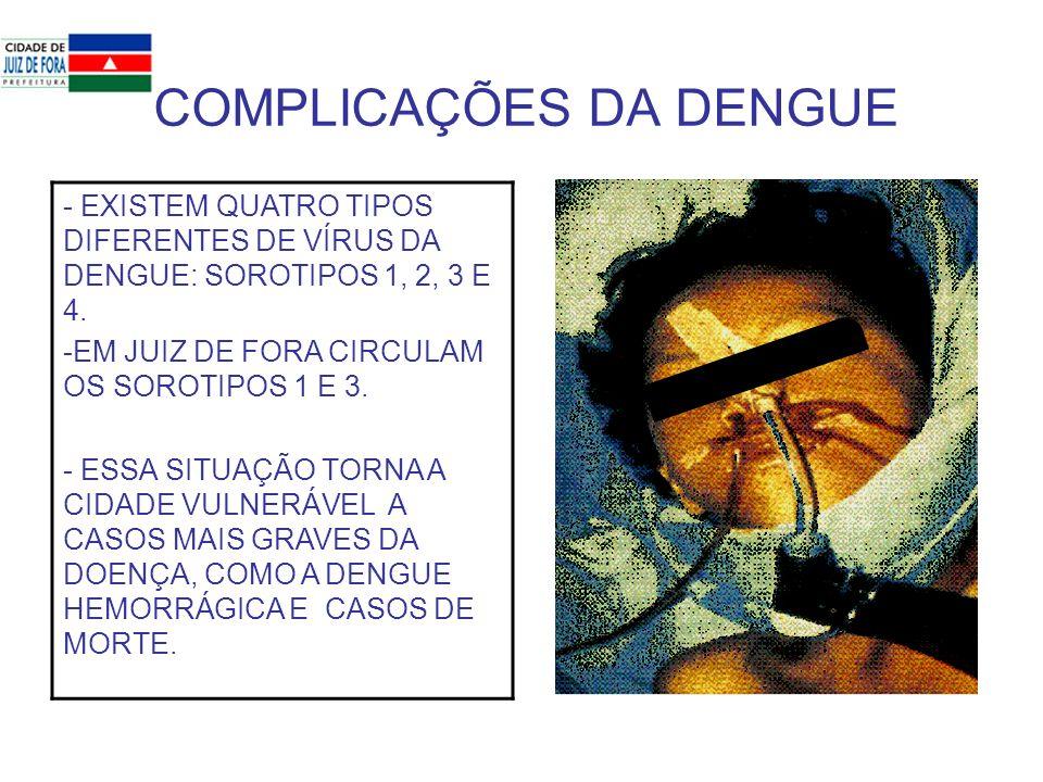 COMPLICAÇÕES DA DENGUE - EXISTEM QUATRO TIPOS DIFERENTES DE VÍRUS DA DENGUE: SOROTIPOS 1, 2, 3 E 4. -EM JUIZ DE FORA CIRCULAM OS SOROTIPOS 1 E 3. - ES