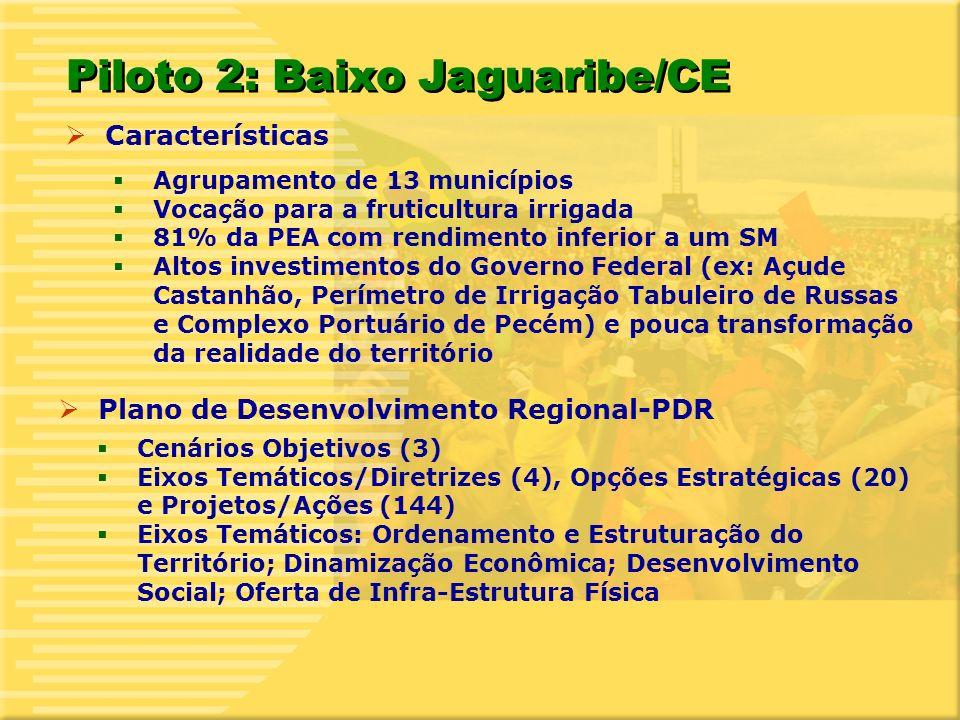 11 Características Agrupamento de 13 municípios Vocação para a fruticultura irrigada 81% da PEA com rendimento inferior a um SM Altos investimentos do Governo Federal (ex: Açude Castanhão, Perímetro de Irrigação Tabuleiro de Russas e Complexo Portuário de Pecém) e pouca transformação da realidade do território Piloto 2: Baixo Jaguaribe/CE Plano de Desenvolvimento Regional-PDR Cenários Objetivos (3) Eixos Temáticos/Diretrizes (4), Opções Estratégicas (20) e Projetos/Ações (144) Eixos Temáticos: Ordenamento e Estruturação do Território; Dinamização Econômica; Desenvolvimento Social; Oferta de Infra-Estrutura Física