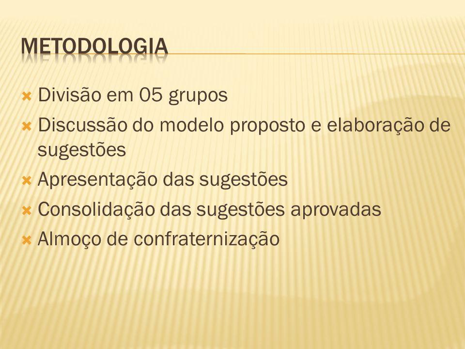 Divisão em 05 grupos Discussão do modelo proposto e elaboração de sugestões Apresentação das sugestões Consolidação das sugestões aprovadas Almoço de