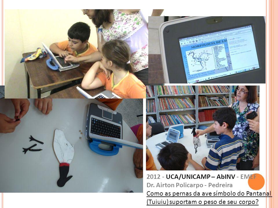 2012 - UCA/UNICAMP – AbINV - EMEF Dr. Airton Policarpo - Pedreira Como as pernas da ave símbolo do Pantanal (Tuiuiu) suportam o peso de seu corpo?