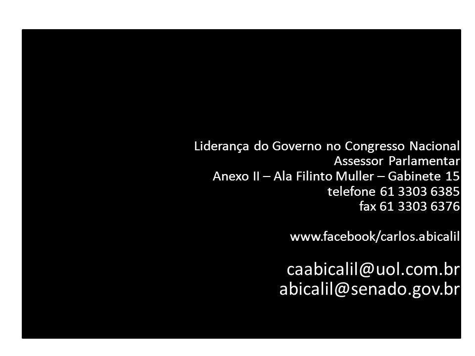 VAI VALER A PENA TER AMANHECIDO ? Liderança do Governo no Congresso Nacional Assessor Parlamentar Anexo II – Ala Filinto Muller – Gabinete 15 telefone