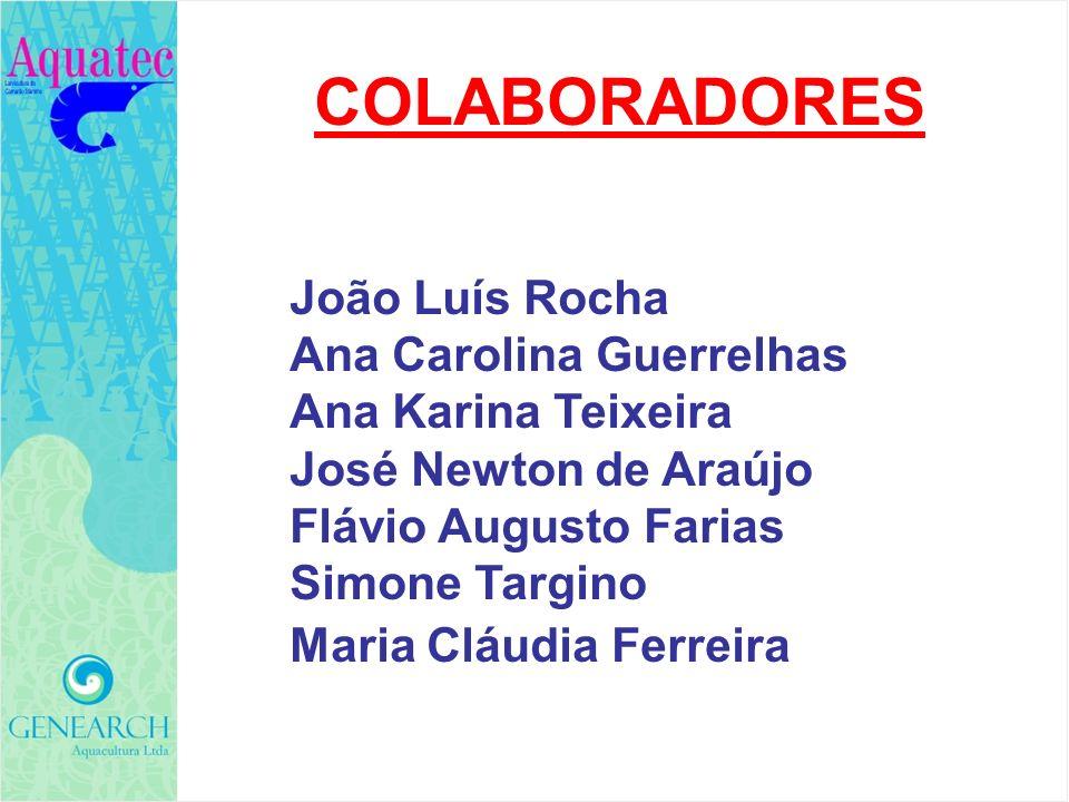 COLABORADORES João Luís Rocha Ana Carolina Guerrelhas Ana Karina Teixeira José Newton de Araújo Flávio Augusto Farias Simone Targino Maria Cláudia Fer