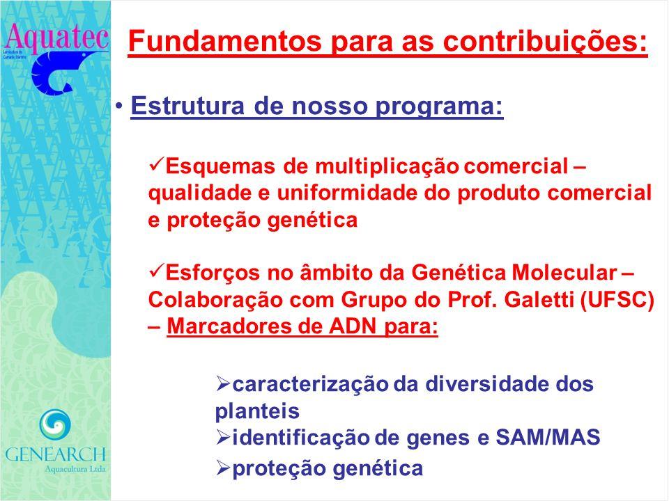GENEARCH AQUACULTURA Todas estas contribuições representam: um alto esforço de investimento um tremendo esforço logístico e de organização complexo e difícil esforço legal e burocrático que durou vários anos uma aposta e um compromisso com o futuro da carcinicultura Brasileira