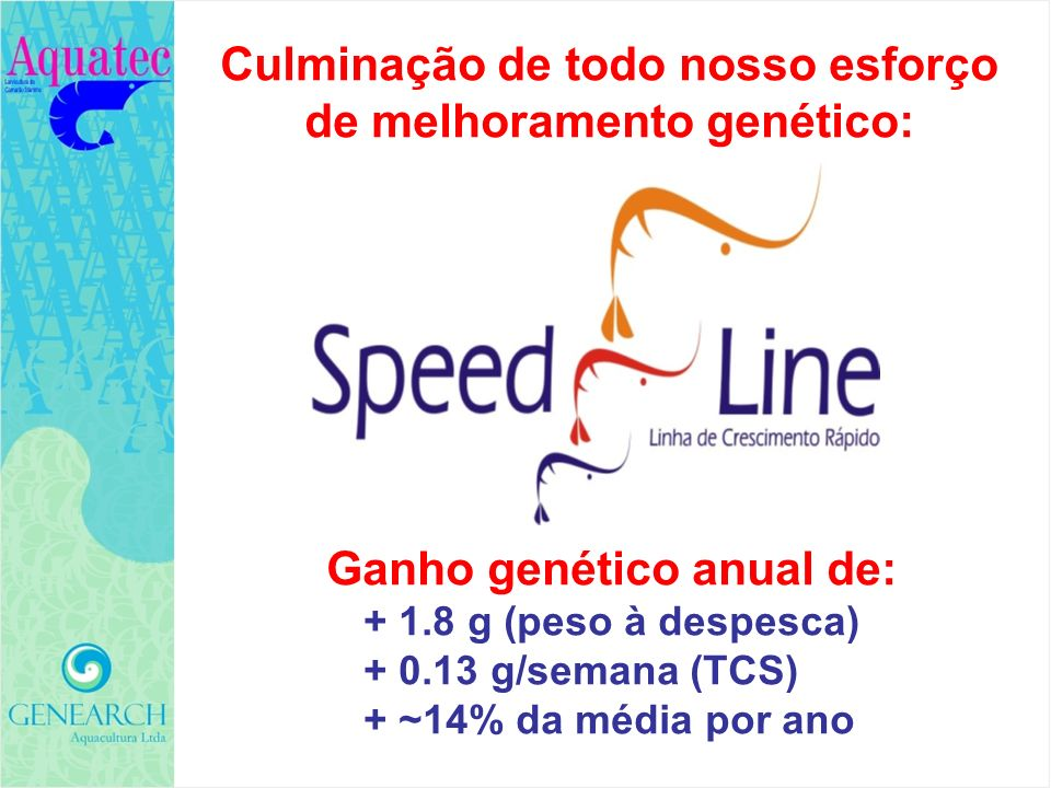 AVALIAÇÃO DO GANHO GENÉTICO E TESTES COMERCIAIS Comparações simultâneas lado-a-lado, no mesmo viveiro, mesmo ambiente, com animais marcados Comparações famílias selecionadas com famílias-controle Comparações Speed Line com produtos de competidores