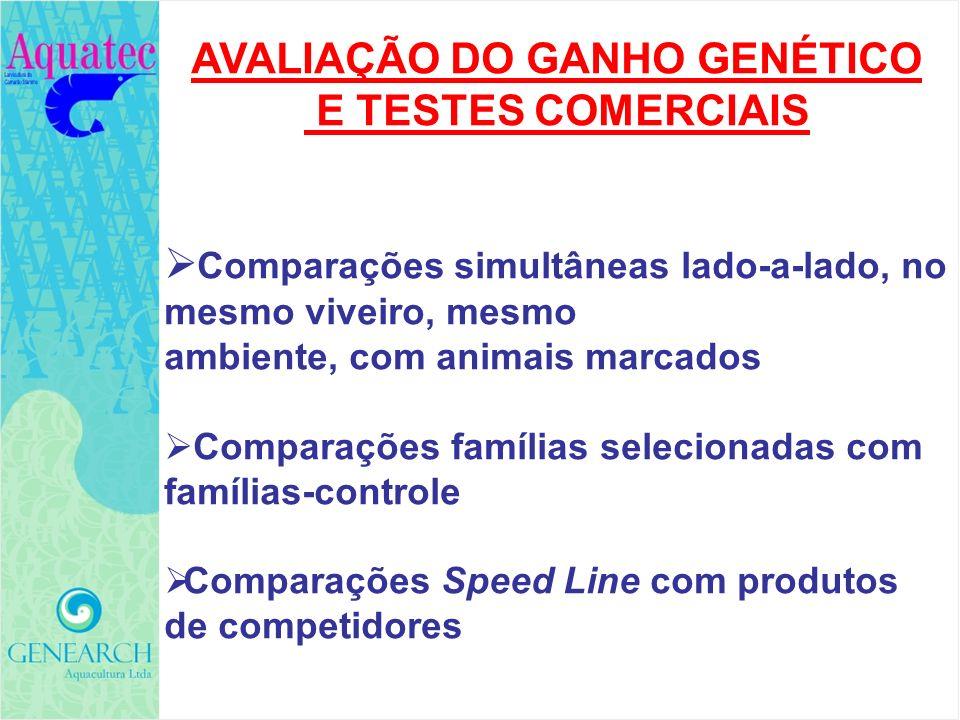 AVALIAÇÃO DO GANHO GENÉTICO E TESTES COMERCIAIS Comparações simultâneas lado-a-lado, no mesmo viveiro, mesmo ambiente, com animais marcados Comparaçõe