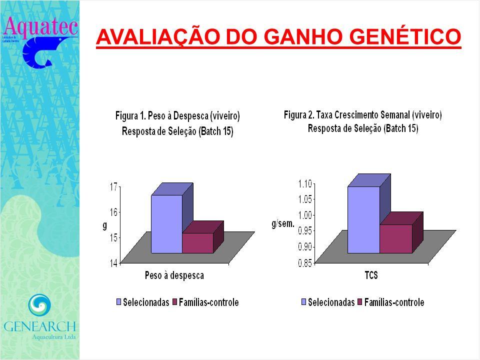 GENEARCH AQUACULTURA TEMAS EM CONSIDERAÇÃO: Liderar para promover novos sistemas de produção mais adequados para nossas linhagens SPF.