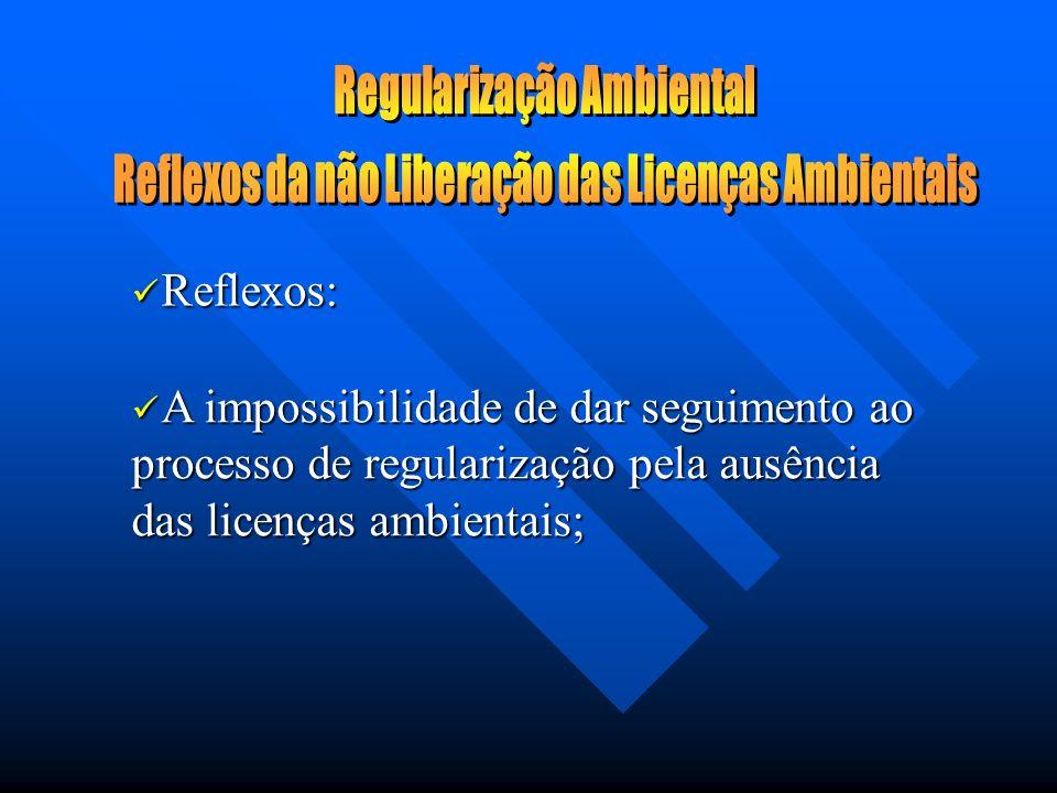 A impossibilidade de dar seguimento ao processo de regularização pela ausência das licenças ambientais; A impossibilidade de dar seguimento ao processo de regularização pela ausência das licenças ambientais; Reflexos: Reflexos: