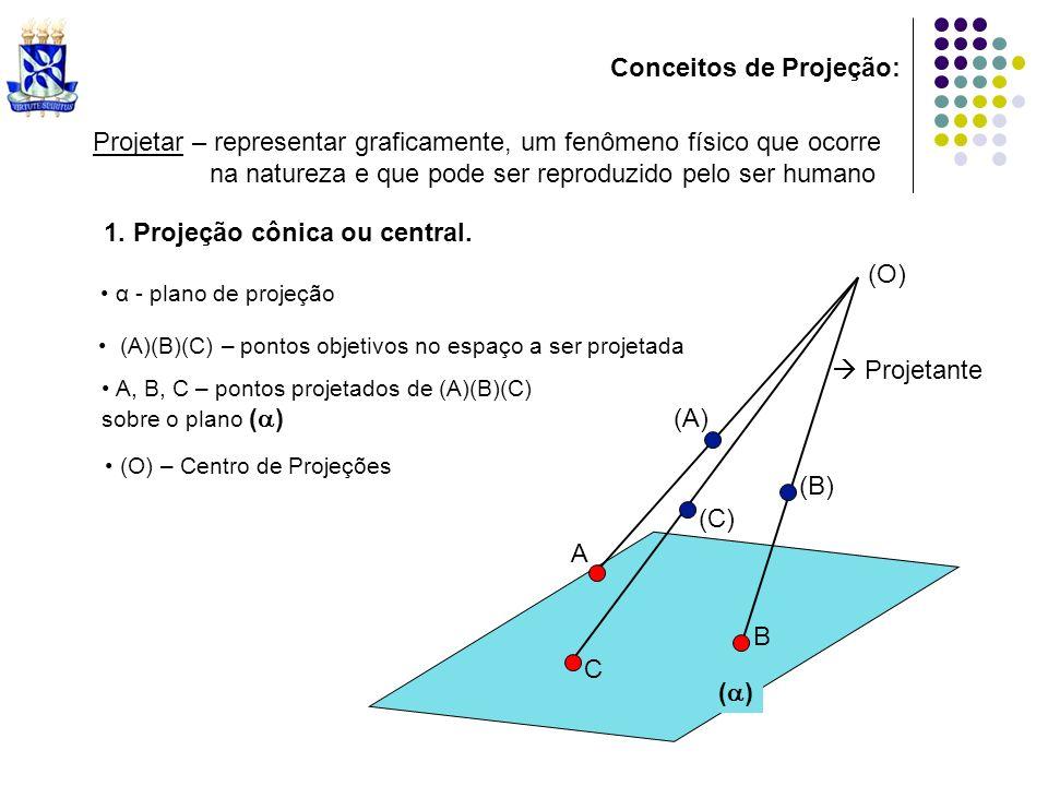Conceitos de Projeção: ( ) Projetar – representar graficamente, um fenômeno físico que ocorre na natureza e que pode ser reproduzido pelo ser humano (