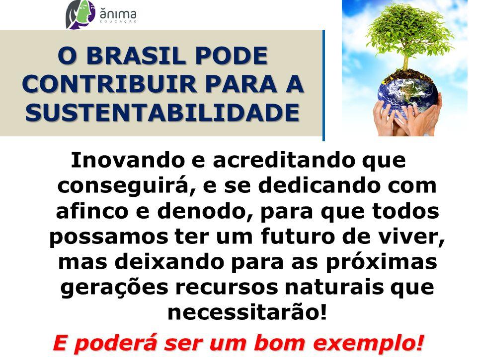 O BRASIL PODE CONTRIBUIR PARA A SUSTENTABILIDADE Inovando e acreditando que conseguirá, e se dedicando com afinco e denodo, para que todos possamos te